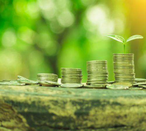 Dünya Bankası'ndan İklim Değişikliği ile Mücadelede için Rekor Finansman
