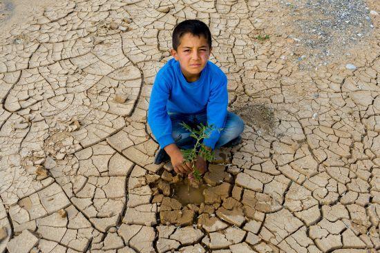 """Alarko Carrier'ın Düzenlediği """"Küresel İklim Değişikliği Fotoğraf Yarışması""""nın Kazananları Belli Oldu"""