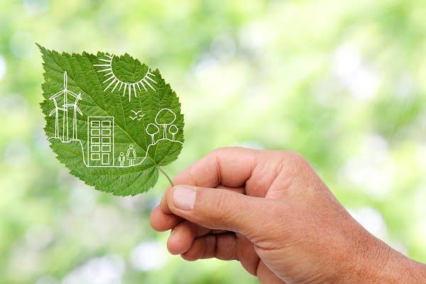 AB Yeşil Mutabakatı ve Türkiye'ye Etkileri